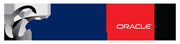 Terillium, Oracle ERP Consulting